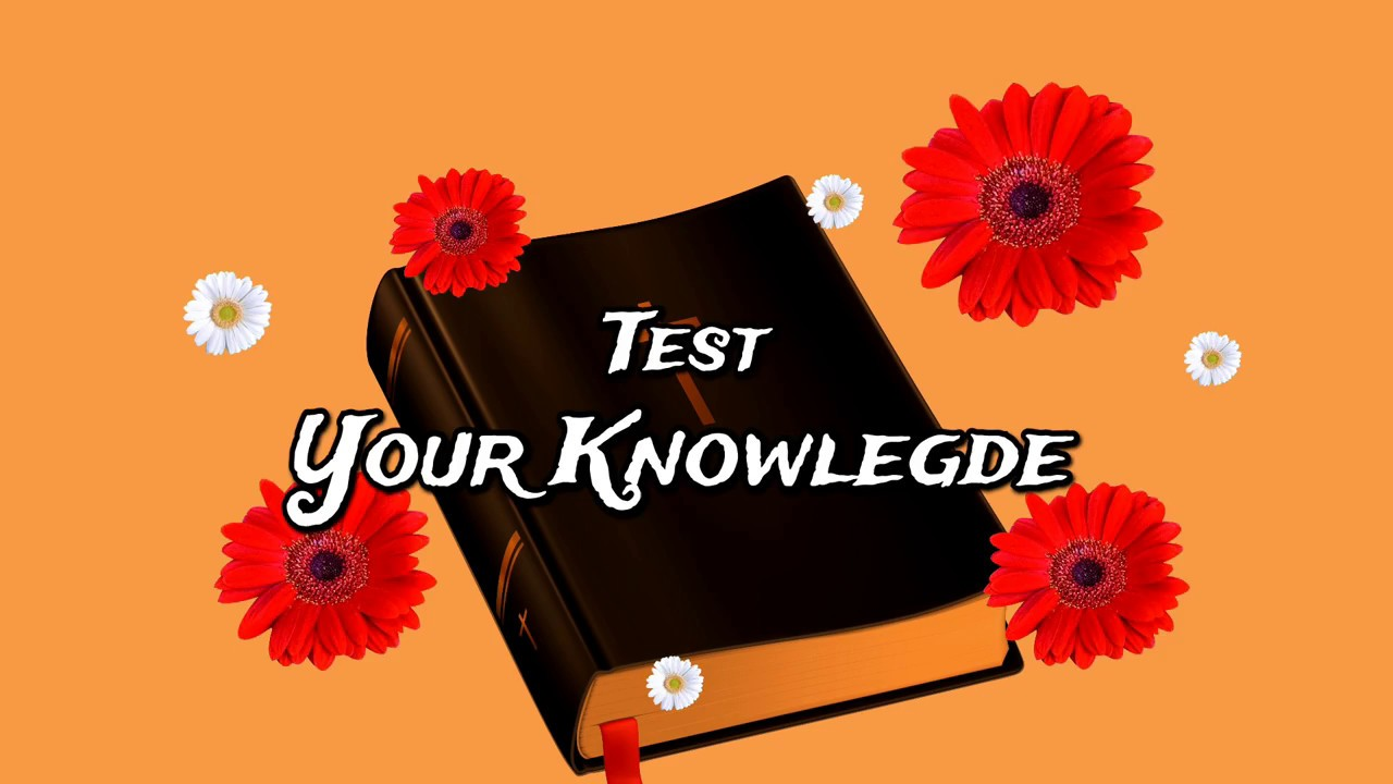 Bible Quiz || All question Answer || Test your Knowledge