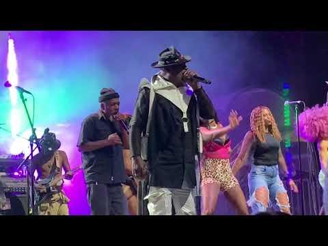 George Clinton & Parliament - Funkadelic Live NYC #4 06/04/19