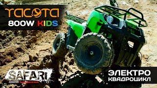YACOTA 800W / SAFARI Video
