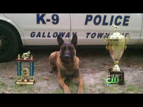 Beloved Galloway Township K-9 Officer Passes Away