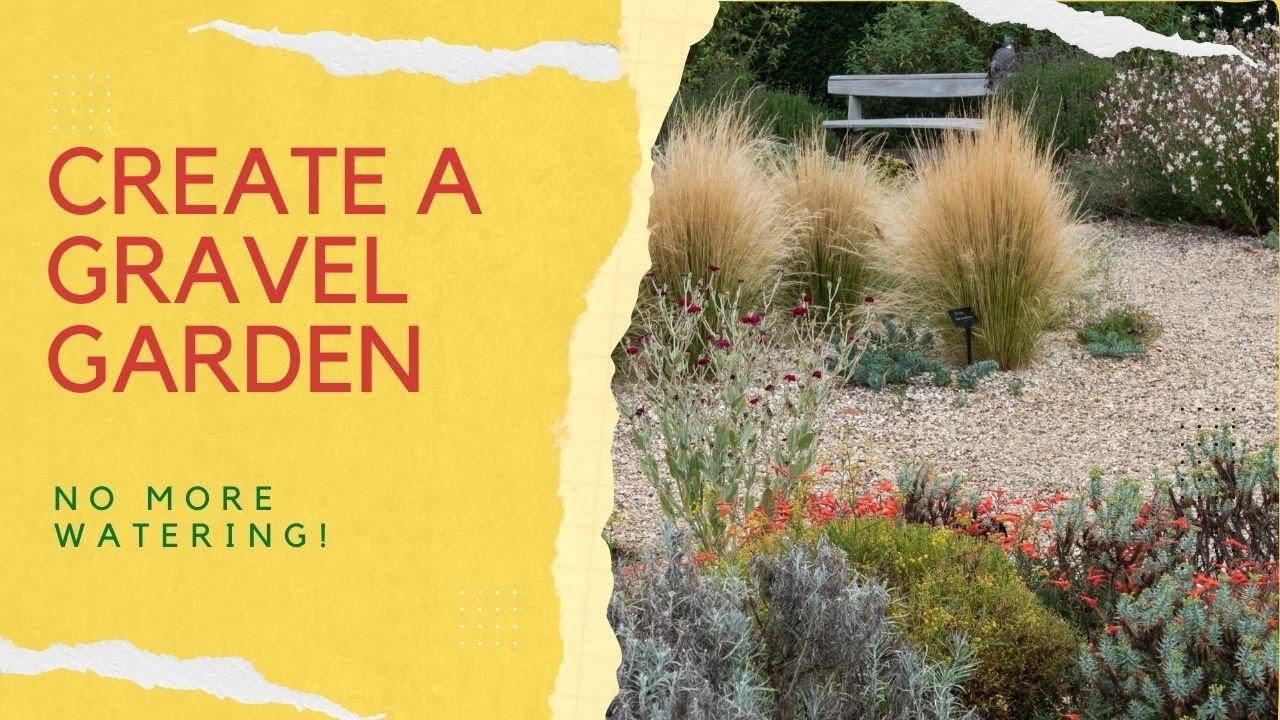 How to make a dry garden or border
