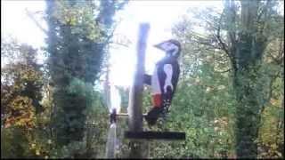 Woodpecker Whirlygig,whirligig, Automaton.
