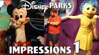 Disney Park Impressions Compilation #1