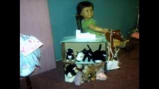American Girl Doll Scenes