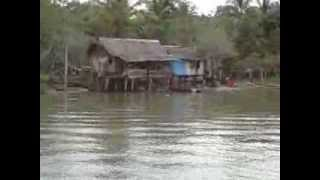 Sailing Kikori river Papua New Guinea in a speedboat