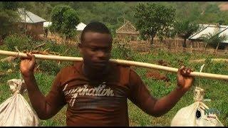 The Stupid Servant  -  Bishop Umoh 2019 Latest Nigerian Comedy Movie Full HD