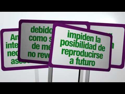 Spot informativo sobre servicios de Salud Sexual y Reproductiva. Anticoncepción