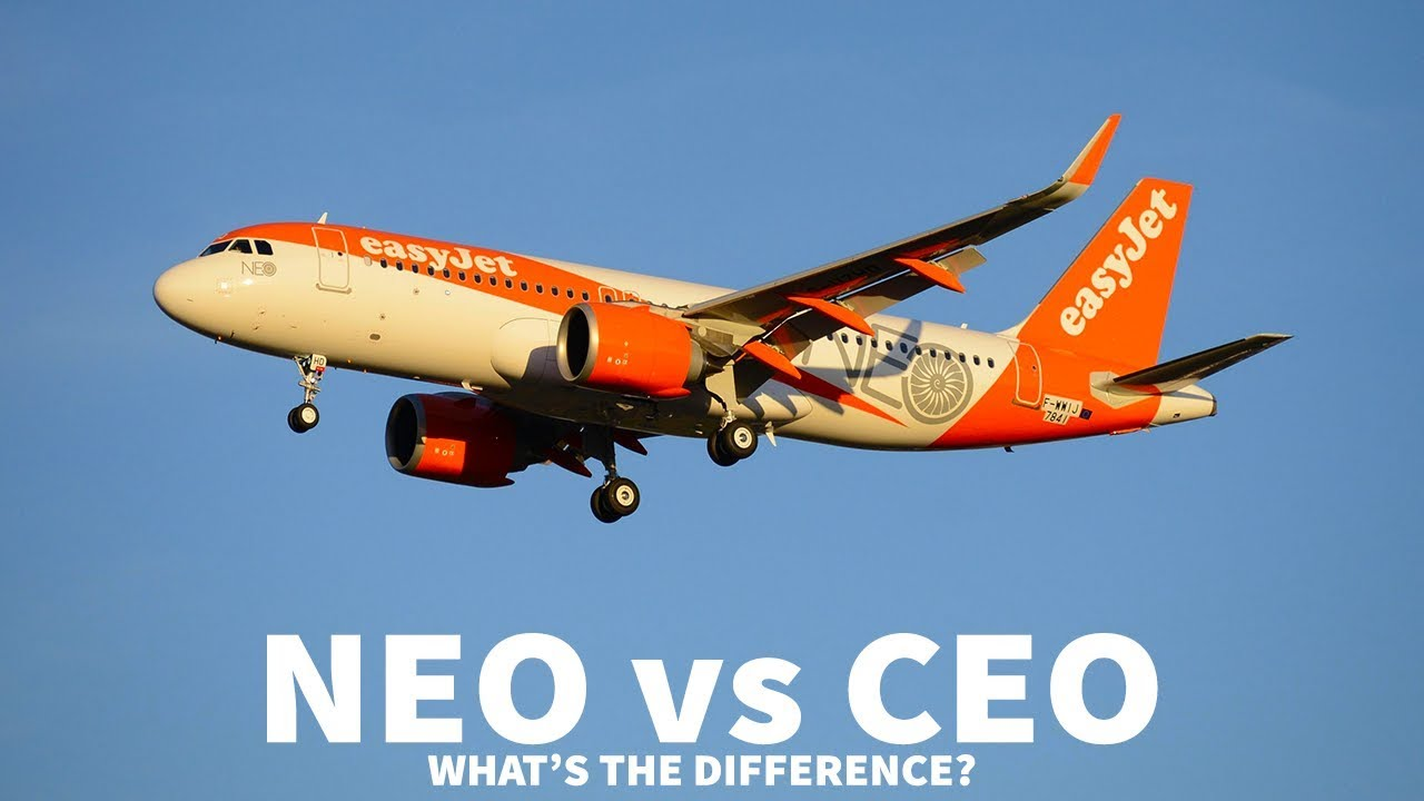 neo-vs-ceo-what-s-the-difference