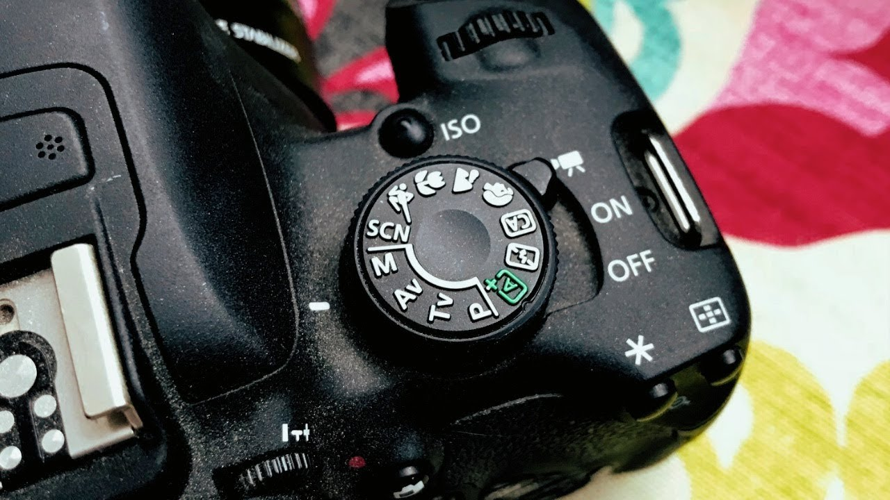 Camera Settings for Low Light & Studio — samantha ebreo
