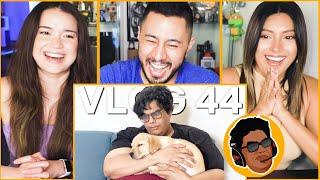 TANMAY BHAT   The Dog Vlog - Vlog 44   Reaction by Jaby Koay, Natasha Martinez & Achara Kirk