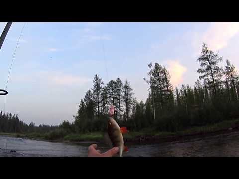 рыбалка таймень плато путорана