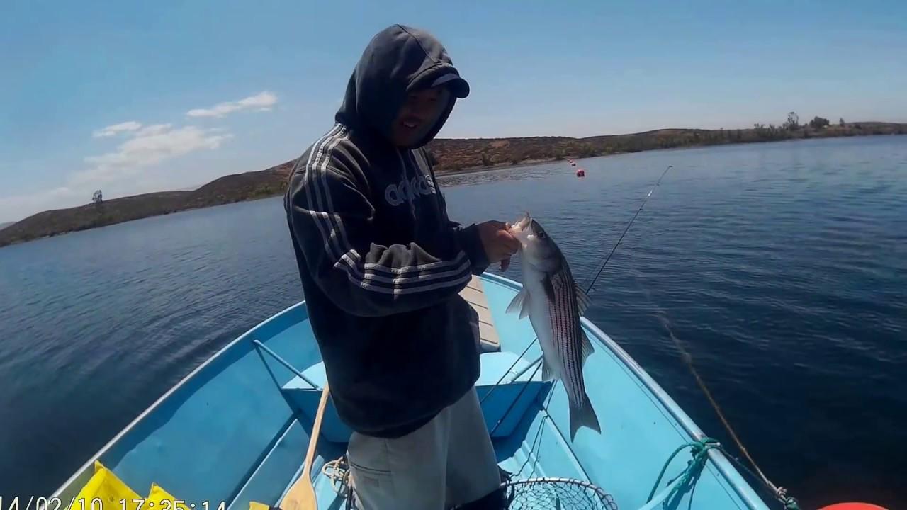 Striper fishing at skinner 2016 youtube for Lake skinner fishing report