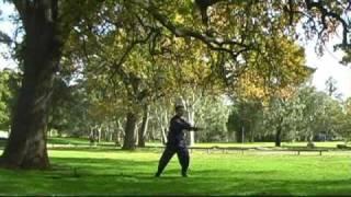 18 Forms Tai Chi Qigong (shi Ba Shi) Beginners Introductory Full Form