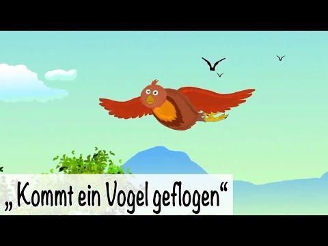 🎵  Kommt ein Vogel geflogen - Kinderlieder deutsch - Frühlingslieder - muenchenmedia
