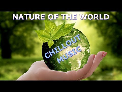🔴 NATURE OF WORLD [Planet Earth] 🌴 Radio Chill - ❤Music Love Emotion❤ • Live Stream |