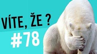 #78 ● VÍTE, ŽE...?