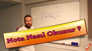 Nota nasıl okunur? nota nereye yazılır?