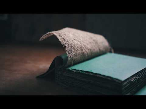 The Book That Grew - A Unique Book Grown By Manipulating Grass Roots