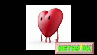 NETHS udgave af lille Hjerte
