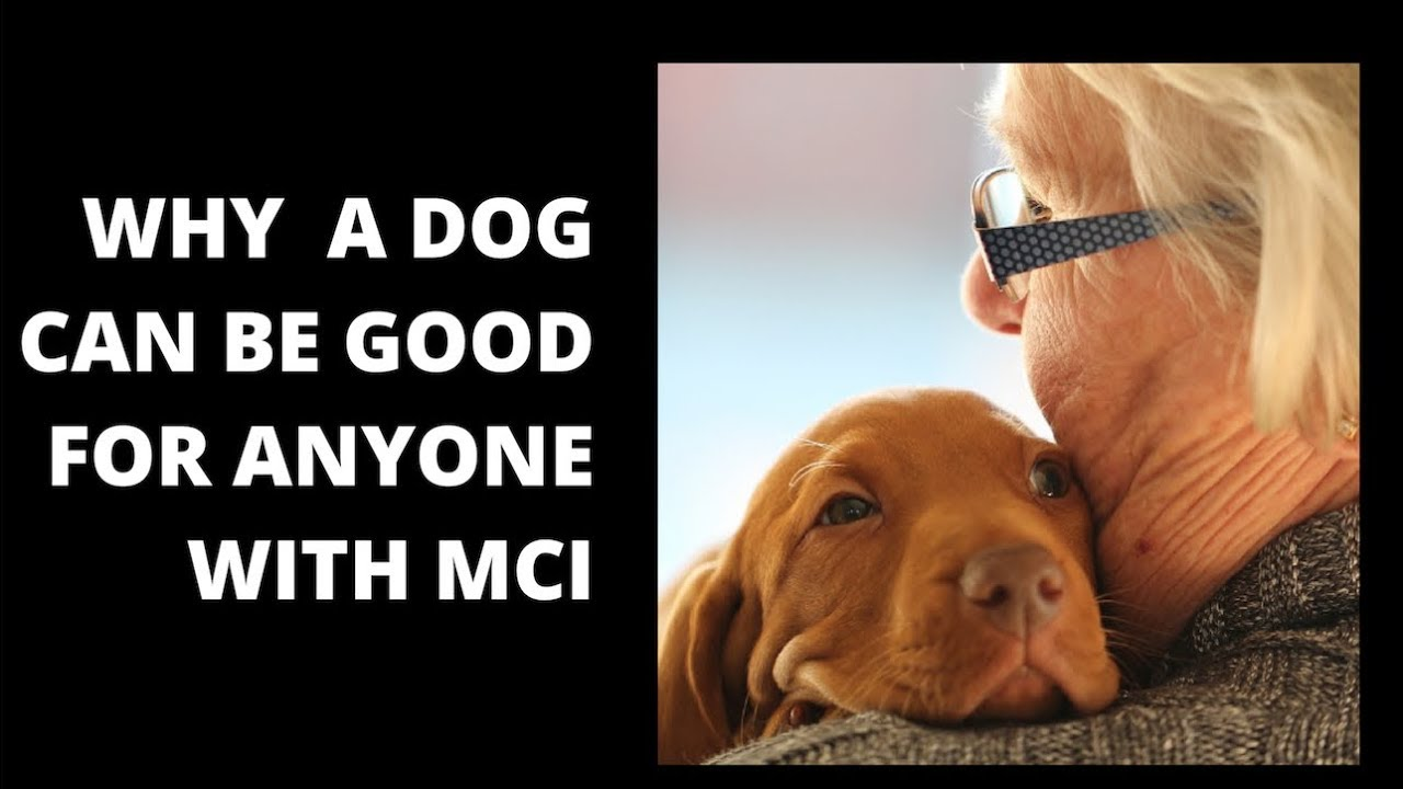 Pet power for people with memory loss