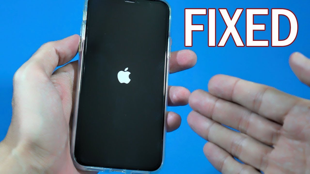 black screen of death fix iphone