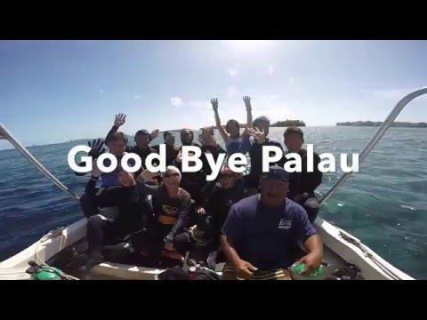 Palau Trip