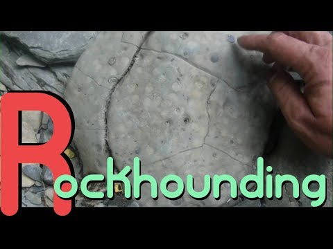 Rockhounding In Virginia