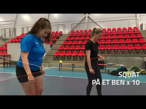 Styrke/mobilitet: Squat