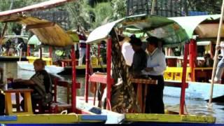 """Xochimilco au Mexique, """"un champ de fleurs"""" très touristique"""