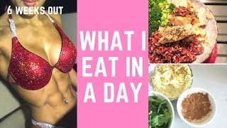 WHAT I EAT IN A DAY (Bikini Body Diet) | Olympia Prep Ep 5