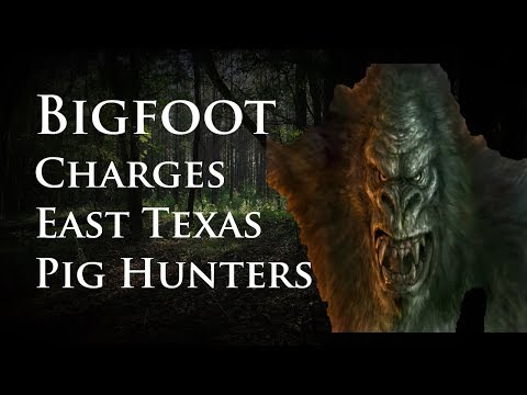 Bigfoot Charges East Texas Pig Hunters