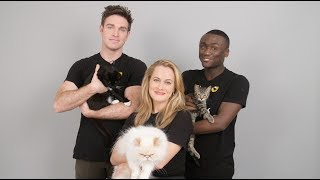 The Cast of CATS Meets Shelter Cats | Cats the Musical