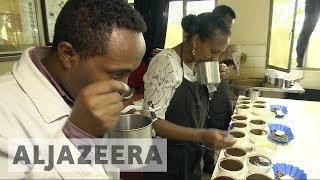 Al Jazeera: Climate Change Threatens Ethiopia Coffee Production