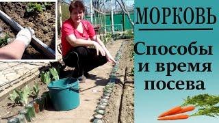 видео Когда сеять морковь в открытый грунт весной?