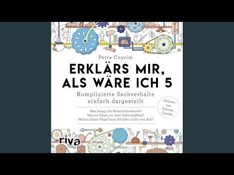 Erklärs mir, als wäre ich 5 YouTube Hörbuch Trailer auf Deutsch