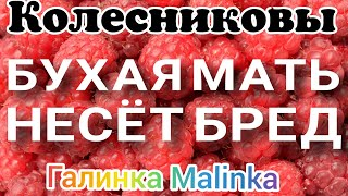 Колесниковы /Бухая мать несет бред /Обзор Влогов /