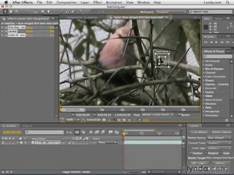 Photoshop CS Tutorials & Photoshop Tutorials including ...