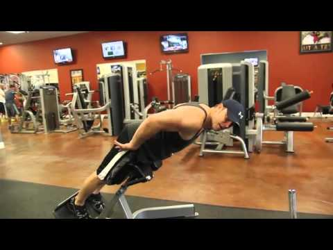 Workout 101- Strengthening The Lower Back