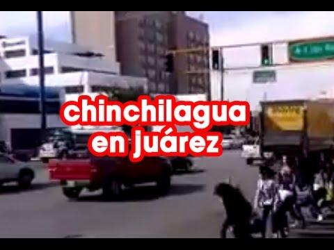Ciudad Ju�rez es el n�mero 1.