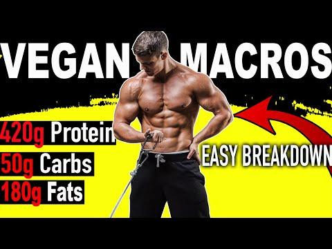 VEGAN BODYBUILDING MACROS 101 | How much Protein!?