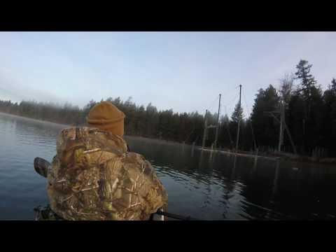 Kayak Duck Hunting