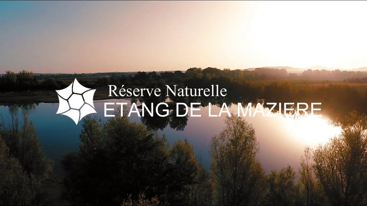 FILM RESERVE NATURELLE NATIONALE DE L'ETANG DE LA MAZIERE