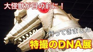 特撮のDNA展 2018.08 明石市立文化博物館にて.