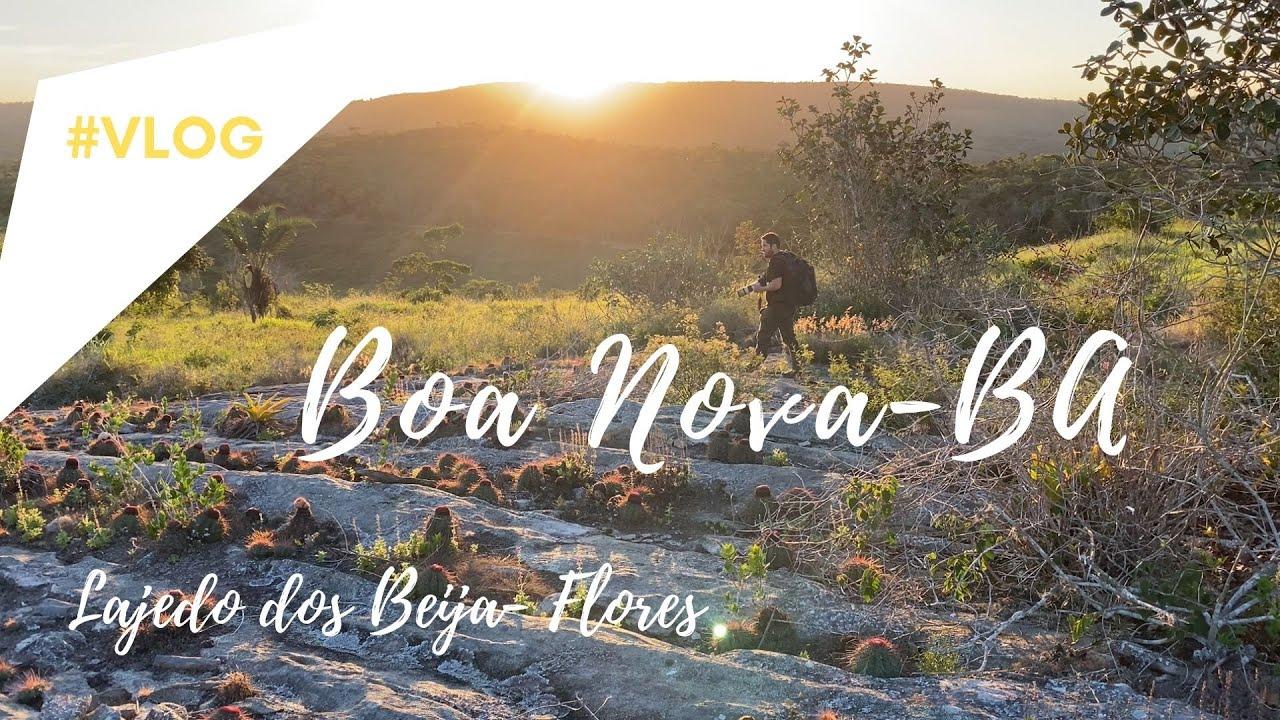 Passarinhando em BOA NOVA - BA no Lajedo dos Beija Flores