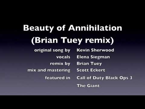 Beauty Of Annihilation REMIX COD BO III