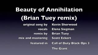 Beauty of Annihilation REMIX COD BO III