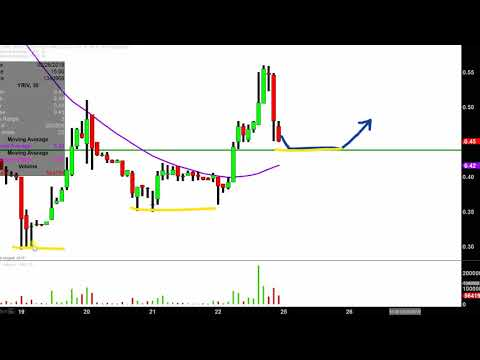 Yangtze River Port and Logistics Limited - YRIV Stock Chart Technical Analysis for 02-22-2019