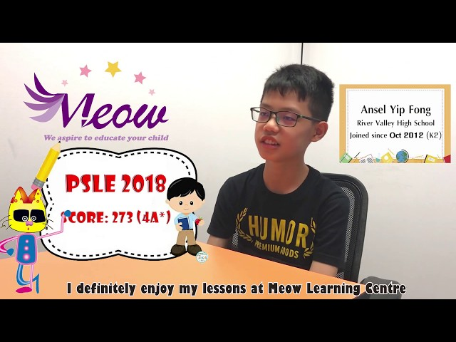 Meow Learning Centre Testimonial - Ansel Yip Fong (River Valley High School)