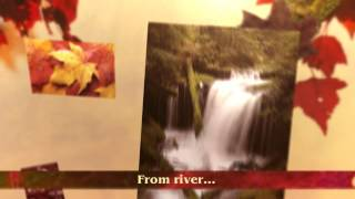 Flutter Official Book Trailer