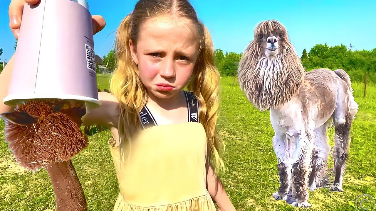 Nastya học cách chăm sóc lạc đà Alpaca và các loài động vật khác
